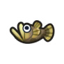 動物森友會魚類懶人包 唐鯉魚
