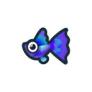動物森友會魚類懶人包 孔雀魚