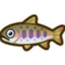 動物森友會魚類懶人包 櫻花鉤吻鮭