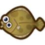 動物森友會魚類懶人包|比目魚