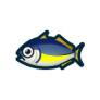 動物森友會魚類懶人包 竹莢魚