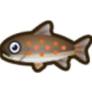 動物森友會魚類懶人包 花羔紅點鮭