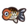 動物森友會魚類懶人包 蘭壽金魚