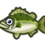 動物森友會魚類懶人包 鱸魚