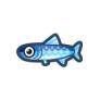 動物森友會魚類懶人包 鳳尾魚